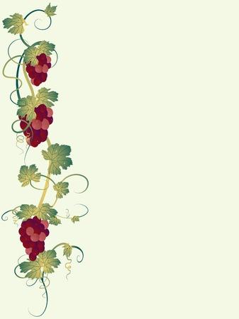 bordure vigne: Grappe de raisin avec des feuilles