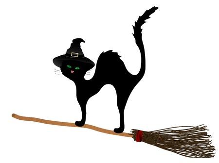 Black cat on the broom Illustration