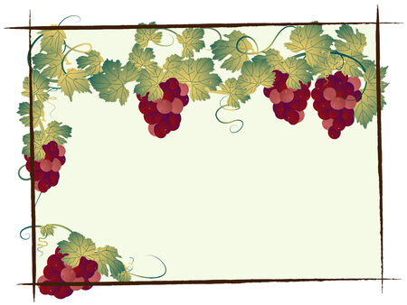 Bunch of grapes with leaves Stock Vector - 7830198