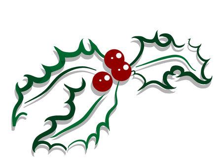 flor de pascua: Acebo de Navidad con bayas rojas Vectores