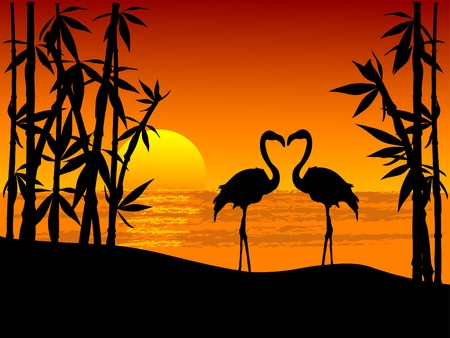 couple beach sunset: Silhouette of two flamingos on the seaside