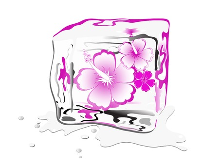 ice cube: Hibiscus bloom frozen in ice cube Illustration