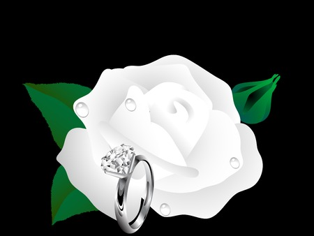 White rose bloom and diamond ring Vector
