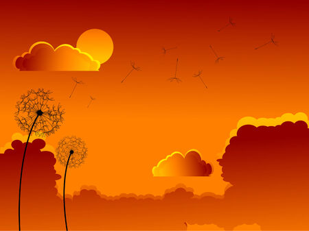 Faded dandelion over sunset sky Vector