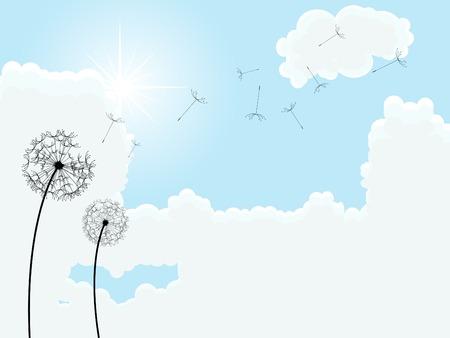 Faded dandelion over blue sky