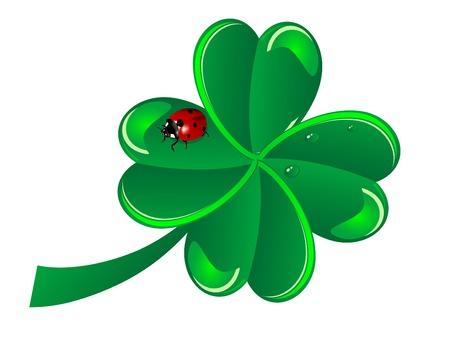 four fourleaf: Quattro leaf clover con la coccinella
