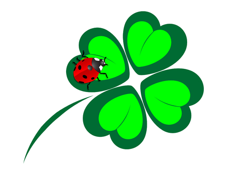 red clover: Four leaf clover with the ladybug