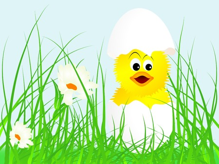 New born chick in egg Stock Vector - 9037176