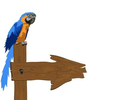 Blue parrot sitting on a wooden signboard Stock Vector - 9493612