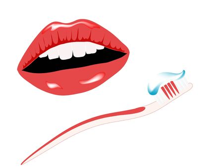 lips smile: Woman smile and the toothbrush Illustration