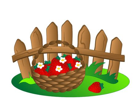 Basket with fresh red strawberries Vector