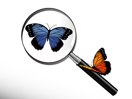 Blue butterfly under magnifying glass Stock Vector - 9652086