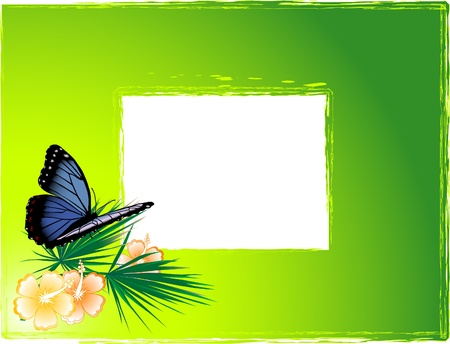 Green background with the blue butterfly Vector