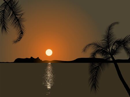 Palm trees in the sunset Vector