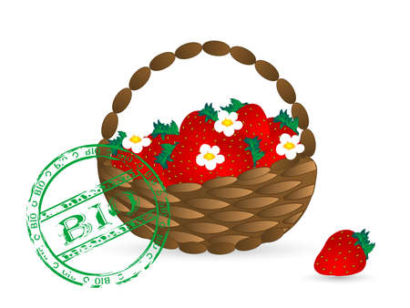Basket with healthy fresh strawberries Vector