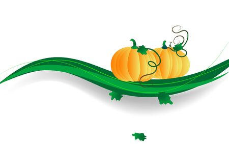 pumpkin border: Abstract background with the pumpkins Illustration
