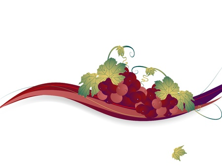 Abstract background with the grapes Vector
