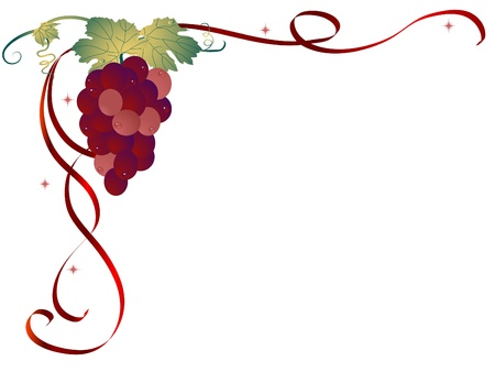 grapes on vine: Abstract background with the grapes Illustration