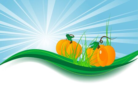 pumpkin border: Abstract background with two pumpkins