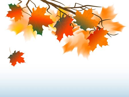 place card: Abstract background with autumn leaves