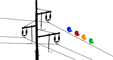 electrical wire: Electric main and colored birds