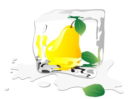 ice cube: Frozen pear in ice cube Illustration