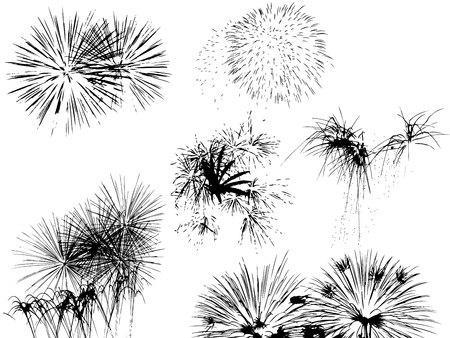 pf: Black silhouette of the fireworks