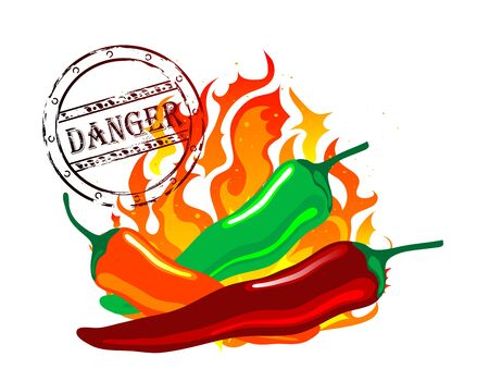 chilli pepper: Red, green and orange chilli pepper Illustration