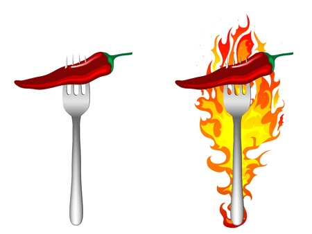 chilli pepper: Hot chilli peppers on the fork