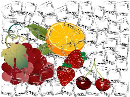 ice cubes: Frozen fruits in ice cubes Illustration