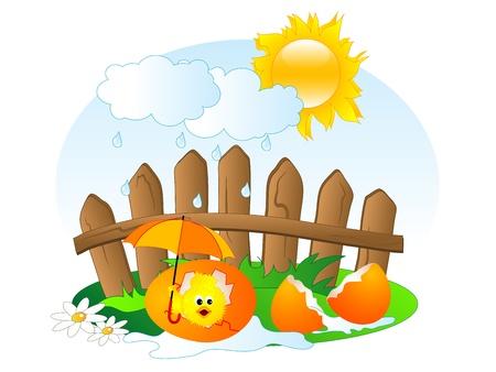 garden fence: Easter chick in the egg Illustration
