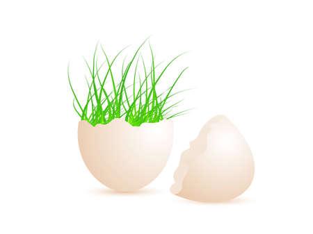 eastertide: Broken egg shell with green grass inside