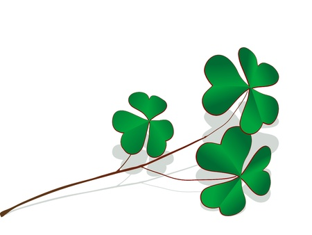 Green clover twig with grey shadow Vector