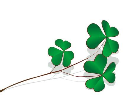 four fourleaf: Trifoglio verde ramoscello di grigio ombra Vettoriali