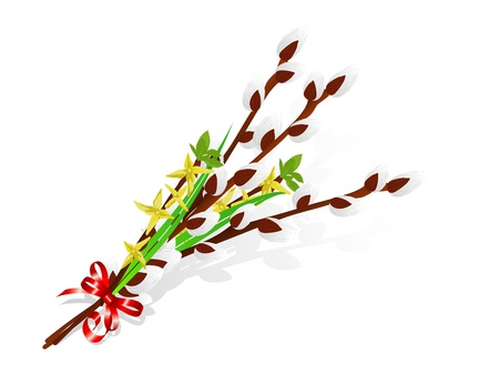 pussy yellow: Twigs of laburnum and pussy willows tied with red ribbon Illustration