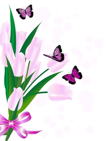 Bouquet of pink tulips and the butterflies Vector