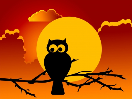 cloudy night sky: Silhouette of the owl against the full moon Illustration