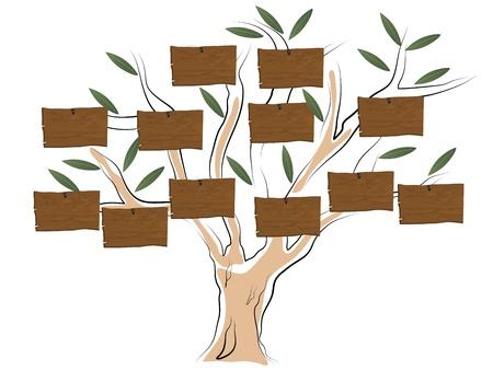 genealogical: Vector illustration of genealogical tree