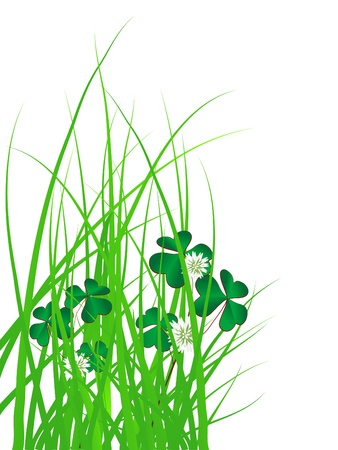 Clover leaves in green grass Stock Vector - 18377315