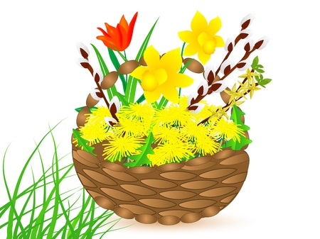 Spring flowers in basket Stock Vector - 18520549