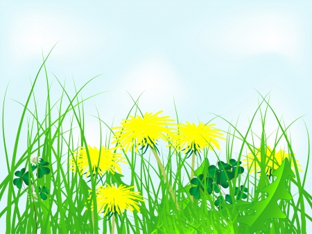 quarterfoil: Yellow dandelions in grass against blue sky Illustration