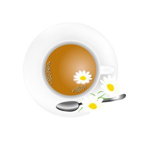 camomile tea: White teapot with fresh camomile tea Illustration