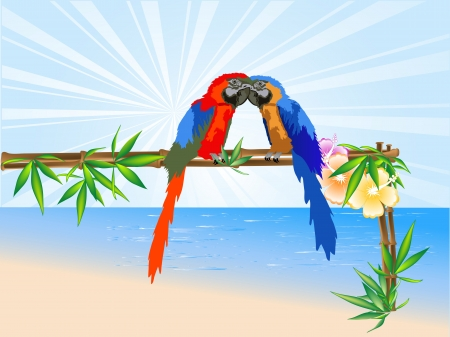 Two parrots sitting on a bamboo frame Vector