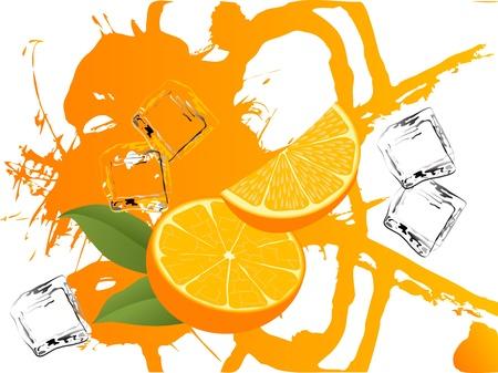 Oranges and orange juice splash Vector