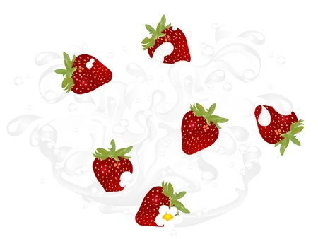 Milk splash with fresh red strawberries Vector