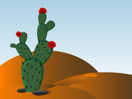 flowering cactus: Prickly pear - cactus with red blooms