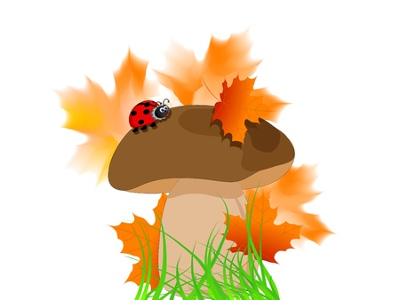 Cartoon brown boletus with ladybird and leaves Vector