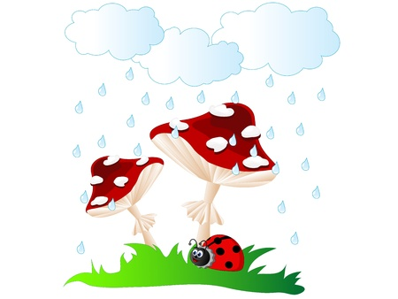 Ladybird under red mushroom umbrella in rain Vector