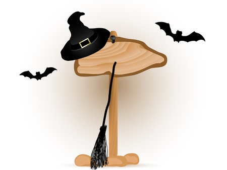 foe: Wooden signboard and the witches hat and broom