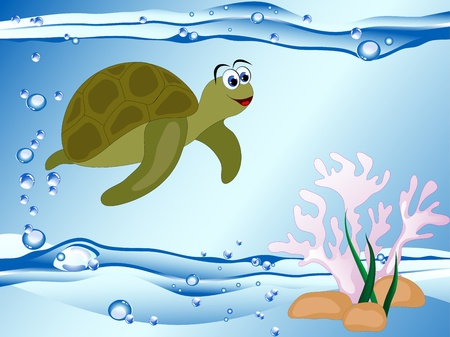 Underwater marine  life - turtle and coral Vector